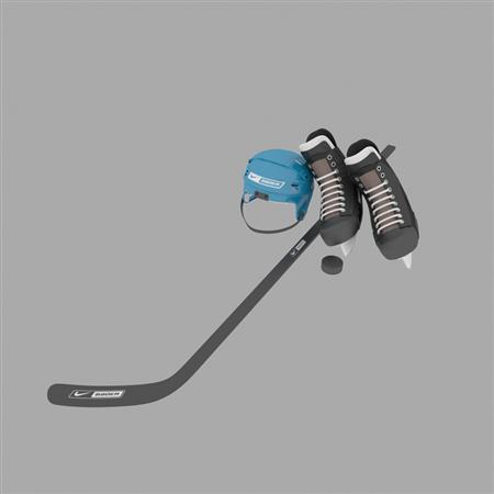 Evermotion Archmode 运动器材 曲棍球装备