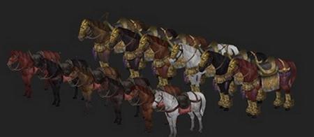 各种马 different horses