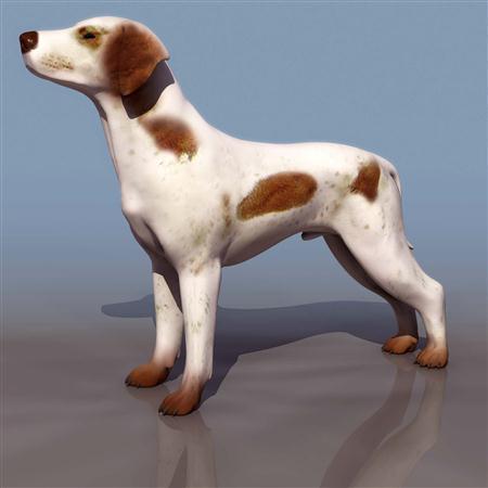 小狗 dog2