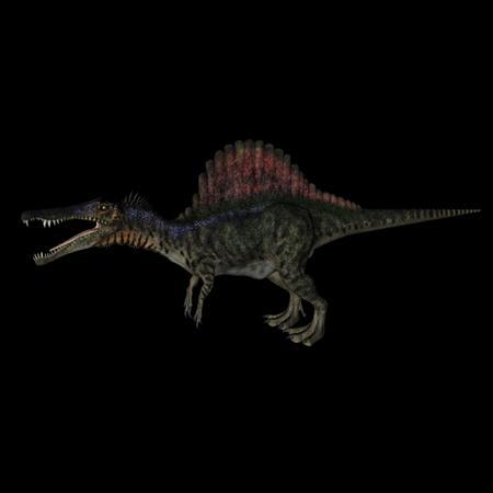 侏罗纪强势来袭 史前恐龙系列 棘龙