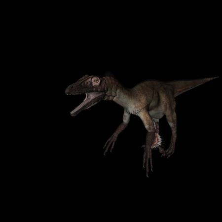 侏罗纪强势来袭 史前恐龙系列 犹他盗龙