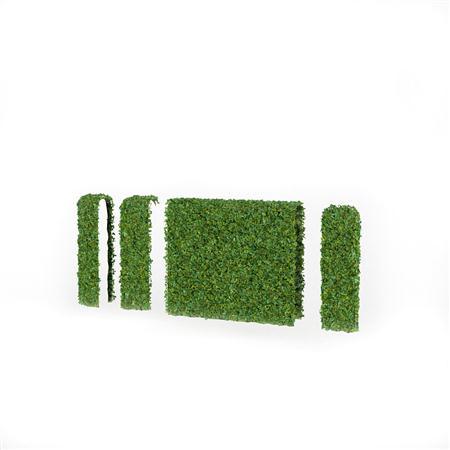 围墙系列 绿色爬山虎围墙
