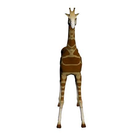 长颈鹿 giraffe