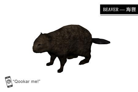 海狸 beaver