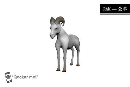 公羊 ram