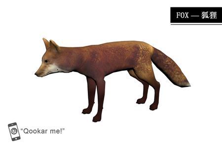 火狐 red fox